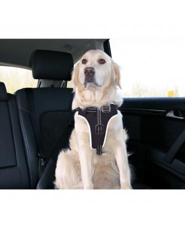 Arnes de seguridad para coche DogProtect