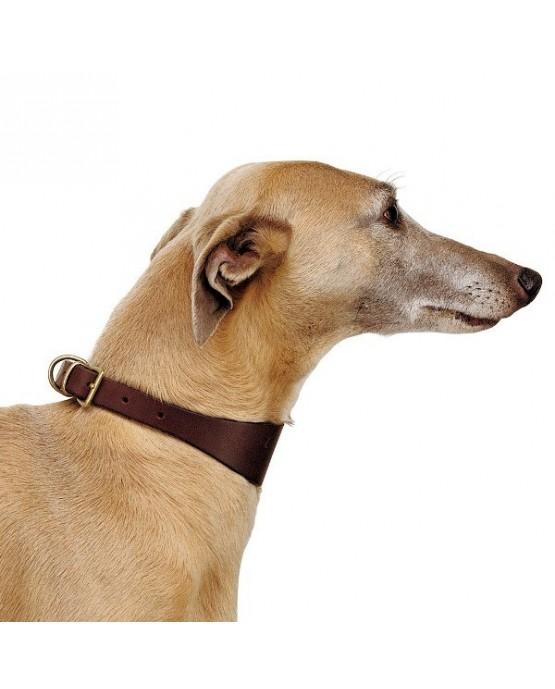 collar-galgo-perros-cuero-ferplast-CLP20