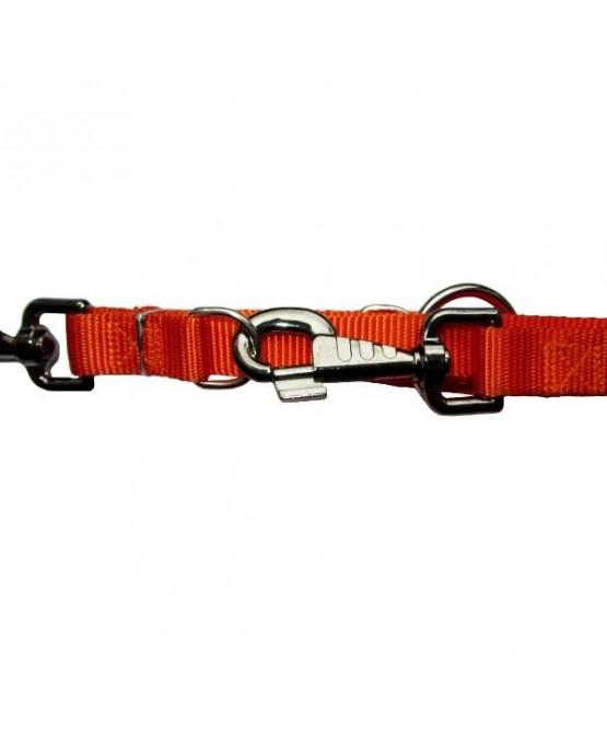 Correa bandolera adiestramiento nylon Basic para perros