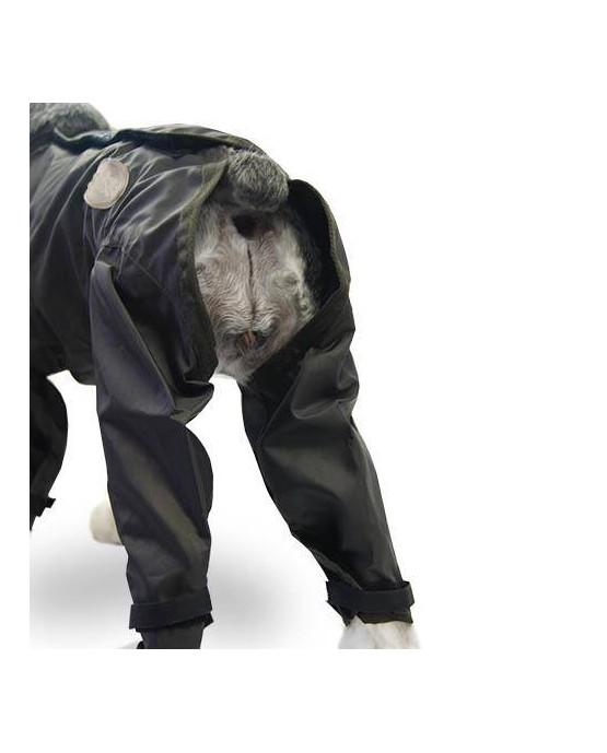 ropa chubasquero impermeable con Patas perros