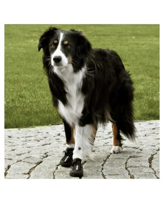 Botas de protección Walker Active para perros