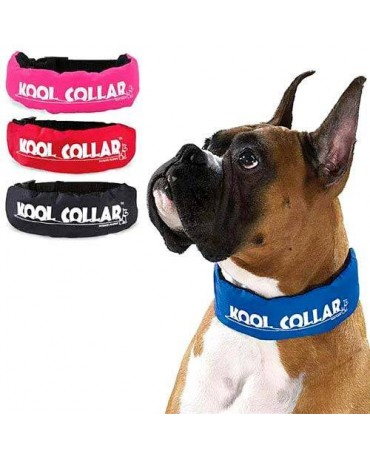 Collar refrescante Kool Collar
