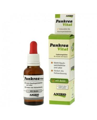 Complemento Pancreatico Pankrea Vital Anibio