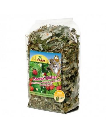 snacks-comida-hojas-baya-roedores-jr-farm-SNTR027