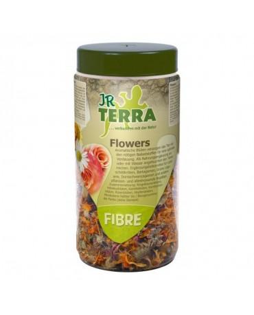 comida-mezcla-flores-reptiles-jr-terra-MYAR101