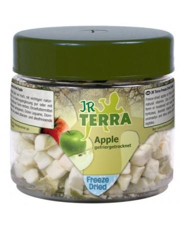 comida-manzana-seca-reptiles-jr-terra-MYAR050