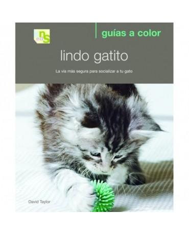 Libro Lindo gatito